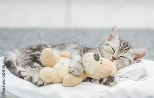 Leinwanddruck Bild Cute baby kitten sleeping with toy bear