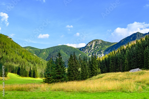 Peaks of the Tatra Mountains before sunset seen from a meadow