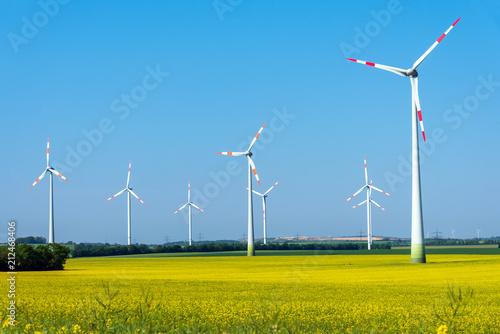 Fototapeta Flowering field of rapeseed with wind energy plants seen in Germany