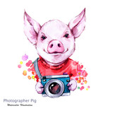 Summer holidays illustration. Watercolor cartoon pig with camera. Funny photographer. Traveling. Symbol of 2019 year. Perfect for T-shirts, invitations, cards, phone cases. - 212483206