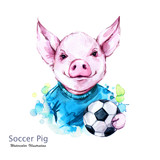 Summer holidays illustration. Watercolor soccer pig with ball. Funny football player. Sport. Symbol of 2019 year. Perfect for T-shirts, posters, cards, phone cases. - 212483256