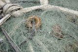 Fishing nets and rope - 212504011