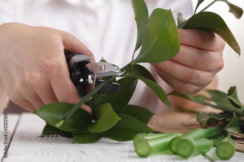 Florist, Woman making beautiful flower arrangement