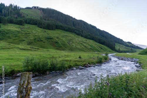 Kleiner Bach der sich durch ein Tal schlängelt