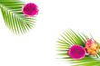 Composition of dragon fruits with palm leaves on white background. Flat lay, top view. - 212529451