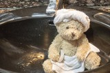 Bear wears towel on head and body with tissue paper is in toilet. - 212531698