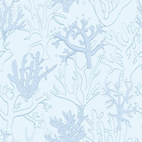 Vector Animals of The Ocean seamless pattern background.