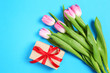 tulips with a gift on a blue background