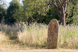 Picturesque English countryside graveyard. Ancient rural churchyard cemetery burial site. - 212580441