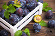 Fresh organic plums in the crate - 212605635