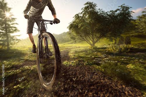 Leinwanddruck Bild Mountainbiker im Gelände