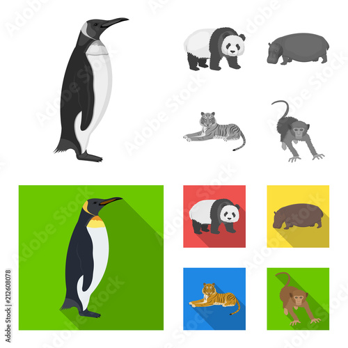 mata magnetyczna Bamboo bear, hippopotamus, wild animal tiger, monkey . Wild animal set collection icons in monochrome,flat style vector symbol stock illustration web.