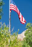 American flag framed by National park landscape vegetation and mountain - 212623099