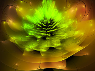 abstract fractal flower background