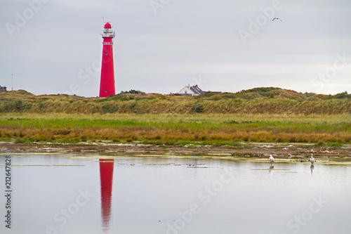Fotobehang Vuurtoren Red lighthouse in the dunes of the Dutch island Schiermonnikoog reflected in water, in the water two Spoonbills