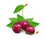 Three Cherries with green leaf. Fresh, juicy, ripe fruit. Red