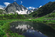 Beautiful reflection nature landscape of mountains with snow and green forest
