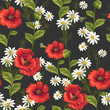 seamless pattern with poppies and daisies - 212705681