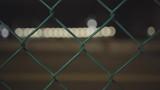 Blurry traffic behind a fenced area - 212709213