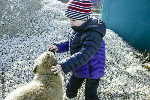 mały słodki chłopiec bawi się z psem