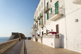 Seafront promede with fortification wall remains in Monopoli, Adriatic Sea, Apulia, Bari province, Italy, Europe - 212720803