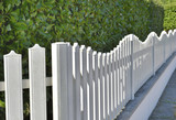 close on white fence along a green hedge of an urban backyard - 212721024