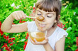 Leinwanddruck Bild - The child eats honey. Selective focus.