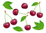 Set of Cherries with green leaf. Fresh, juicy, ripe fruit. Red