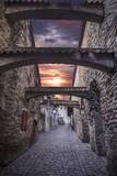 beautiful  photos of Tallinn - 212793850