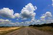asphalt road in steppe - 212802074