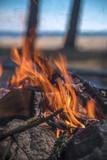 A bonfire burns in a camping i - 212810022