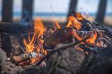 A bonfire burns in a camping i - 212810237