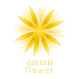 Golden color flower logo, symbol, vector illustration. - 212820025