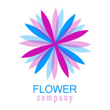 Colorful flower logo, symbol, vector illustration. - 212820061