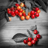 Fresh red cherries on a wooden table - selective color (black and white)