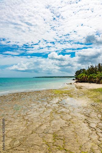 Fotobehang Zanzibar Unguja Coast Landscape in Tanzania. Unguja is known as Zanzibar Island.
