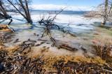Winter Shore At Barr Lake 2 - 212839831