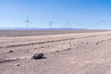 Electrical windmills standing in raw along long road in the desert. Calama, Atacama Desert. Chile - 212845873