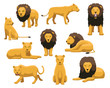 Lion and Lioness Cartoon Vector Illustration
