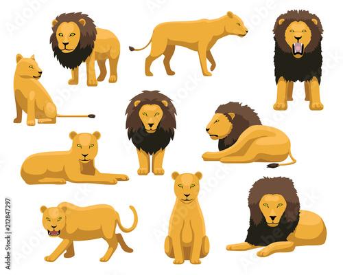 Fototapeta Lion and Lioness Cartoon Vector Illustration
