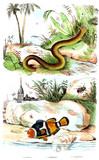 illustration of animal - 212848471