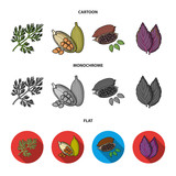 Dill, cocoa beans, basil.Herbs and spices set collection icons in cartoon,flat,monochrome style vector symbol stock illustration web. - 212849057