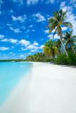 beach and tropical sea - 212864059