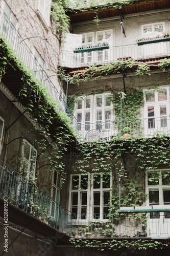 Foto Murales Courtyard