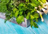salad onion parsley dill green vegan wooden art background - 212907021