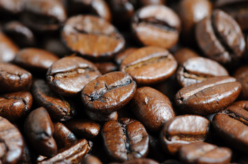 roasted coffee beans macro background