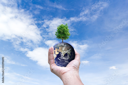 Foto Murales Ecological environment world in hands holding love earth and trees of Elements of this image furnished by NASA