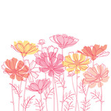 Fototapeta Kosmos - Vector bouquet with outline Cosmos or Cosmea flower bunch, ornate leaf and bud in pastel pink and orange isolated on white background. Contour blooming Cosmos plant for enjoy summer design. © bokasana