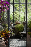 Close up of an old greenhouse - 212924017