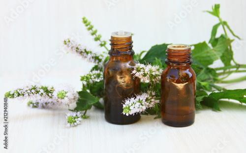 Poster huile essentielle de menthe,